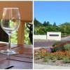 Un vin bun de California - Napa Valley