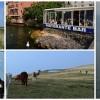 Malcesine, Monte Baldo, Lacul Garda